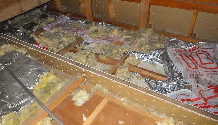 天井裏・ハクビシンやイタチの被害状況